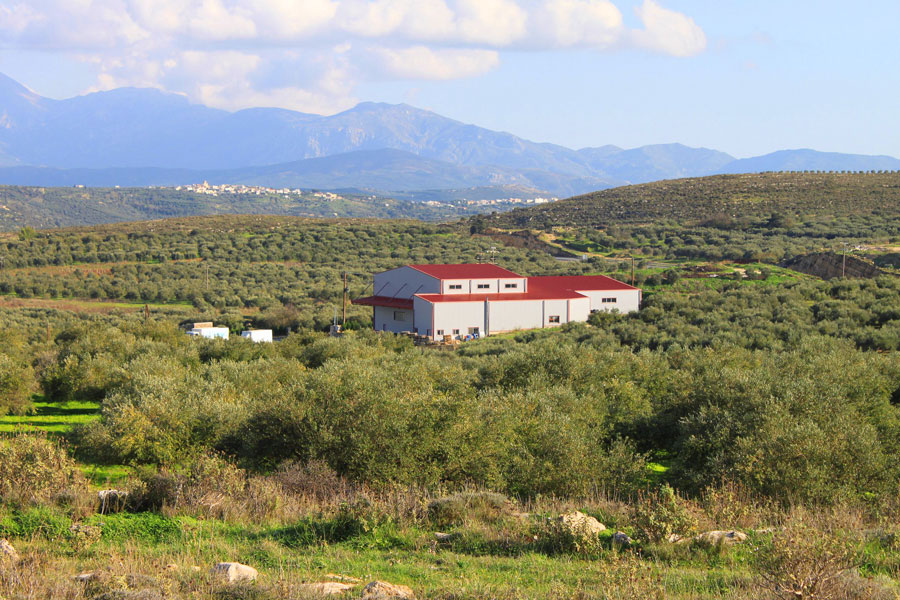 Emelko Olive Oil Company